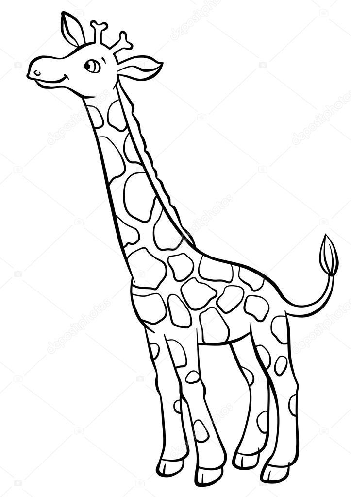 Contorno de jirafa | jirafa comiendo las hojas del árbol — Foto de ...