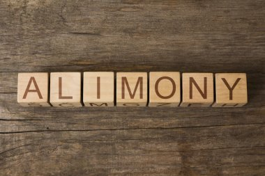 the word of ALIMONY on wooden cubes