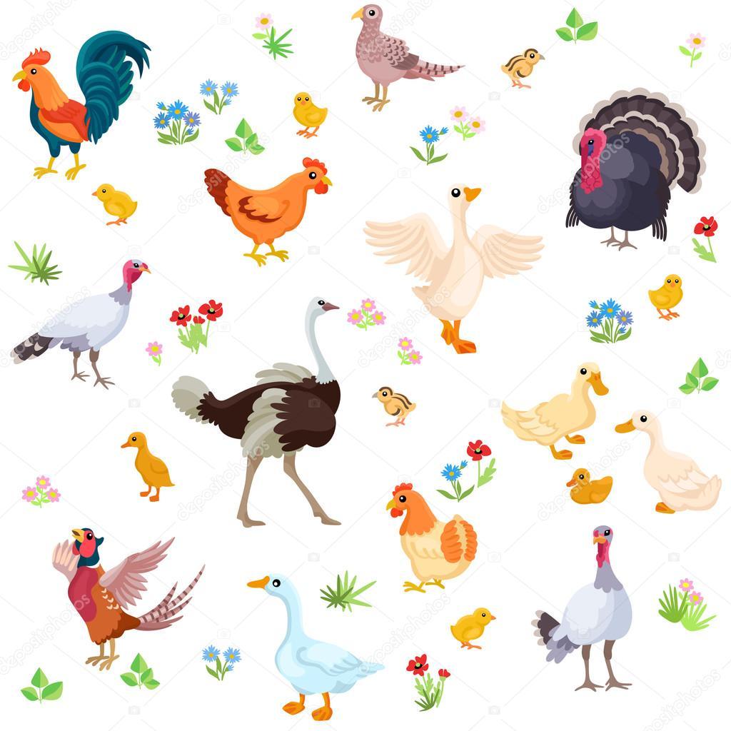 Uccelli dell azienda agricola e loro anatroccoli in stile