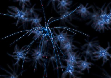 Group of neurons