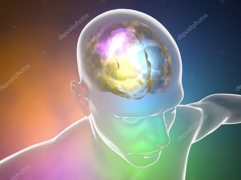 Anatomía de las neuronas del cerebro — Foto de stock © vampy1 #80435026