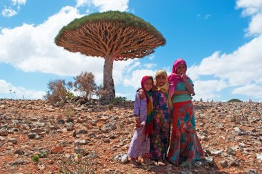 Girls and a Dragon Blood tree in Shibham, the protected area of Dixam Plateau, Socotra, Yemen