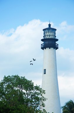 Cape Florida Lighthouse, Bill Baggs Cape Florida State Park, protected area, Key Biscayne, Miami, Miami Beach