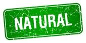 přírodní Zelený čtvereček grunge texturou izolované razítko