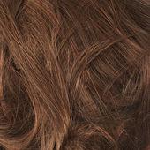 vlasů fragment