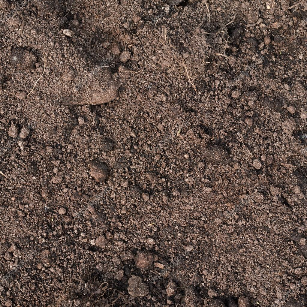 Fragment of earth soil texture