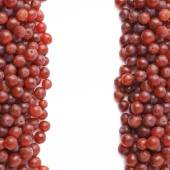 Fotografie Dark red grapes