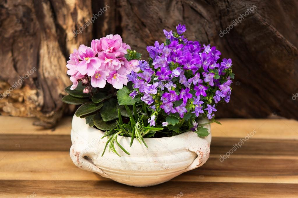 Flores Maceta Interior Rosas Y Lilas Flores Interior Con Muchas - Flores-interior