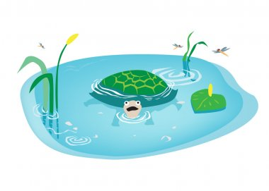 Cartoon art of Turtle swimming in Swamp. Editable Clip Art.