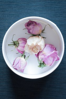 Dried flowers in white round box