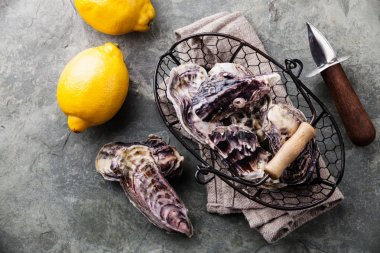 Fresh raw oysters and lemons