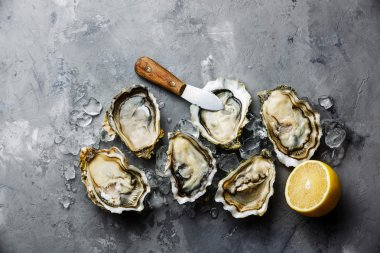 Opened Oysters Fines de Claire and lemon