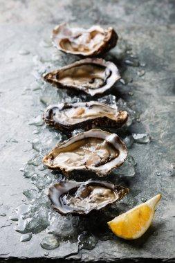 Open Oysters Fines de Claire