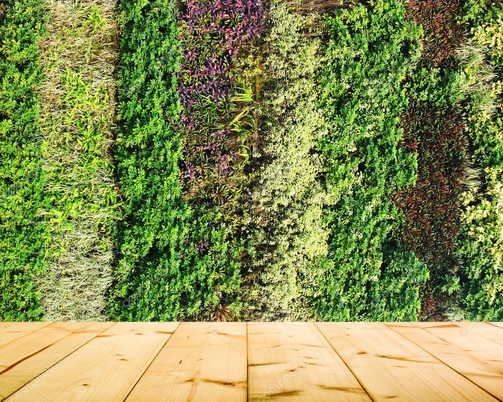 Jard n vertical de la pared de flores y plantas foto de - Fotos en la pared ...