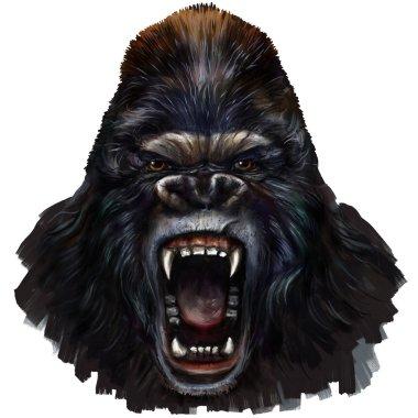 gorilla male scream