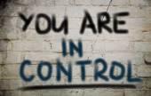 az ellenőrzési elv
