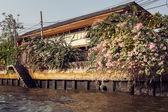 Slums di legno su palafitte il riverside