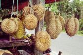 Szabadtéri gyümölcs piac a faluban