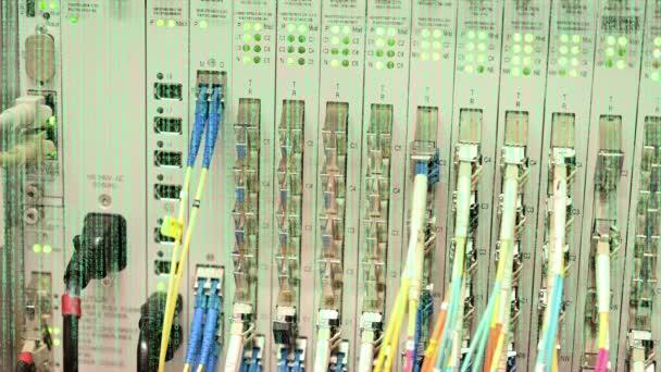 Binärcode vor einem Netzwerkschalter mit Traffic-LED in einem Rechenzentrum