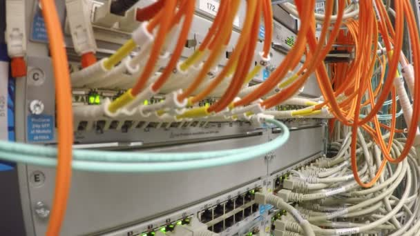 patch panel síť lan