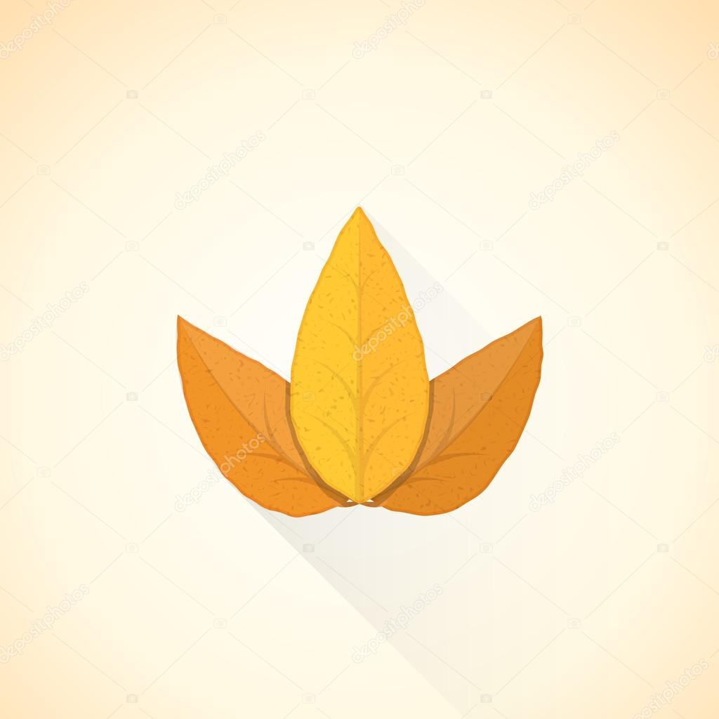 vector flat threesome tobacco leaf illustration ico