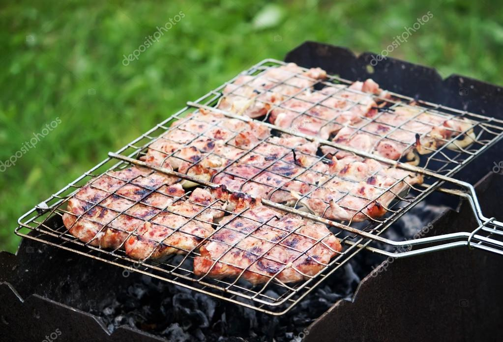 Grilled meat in nature