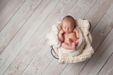 Newborn Baby Sleeping in a Wire Basket