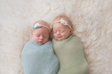 Sleeping Twin Baby Girls