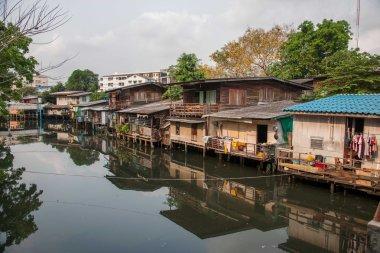 Bangkok shanty towns