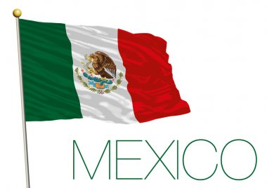 mexico flag isolated on the white background