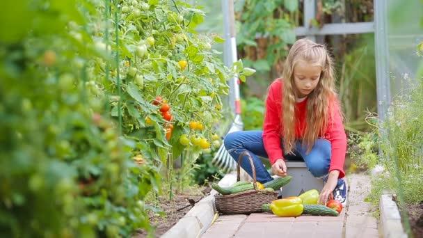 Rozkošná holčička sbírající okurky, papriky a rajčata ve skleníku. Portrét dítěte s červeným rajčetem v rukou.