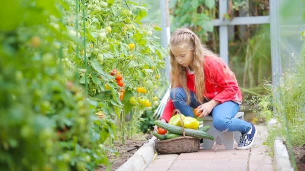 Rozkošná holčička sbírá okurky a rajčata ve skleníku. Portrét dítěte s červeným rajčetem v rukou.