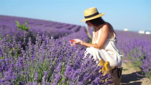 Woman in lavender flowers field at sunset in white dress and hat