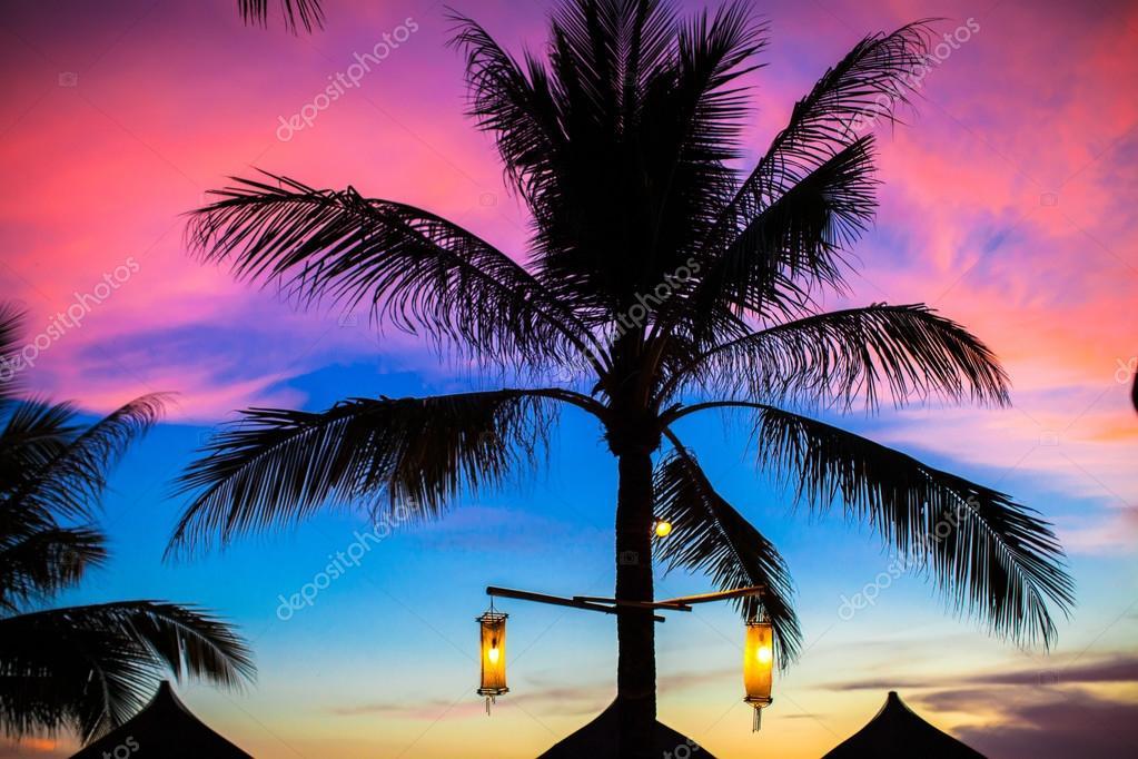 blau rosa und roten sonnenuntergang ber meer strand mit palmen baum silhouette stockfoto d. Black Bedroom Furniture Sets. Home Design Ideas