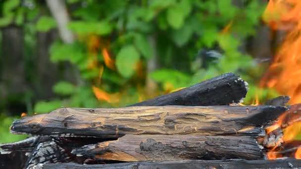 Hořící dřevo. Plamen hoří v grilu. Closeup oheň