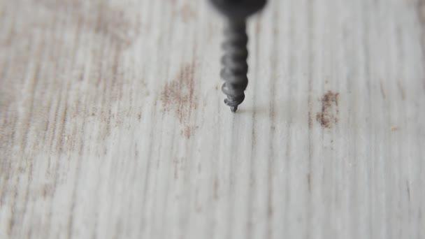 Šrouby šroubovák zápletka v dřevěném prkénku. Truhlářské a stavební práce blízko nahoru. Práce s elektrickým nářadím