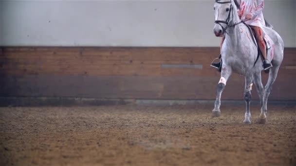 Koni krvavé White v hale