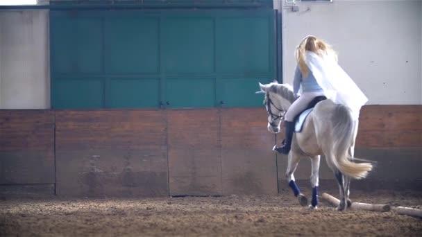 Malá princezna jezdecké koně
