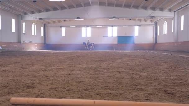 Koni jasná Hall