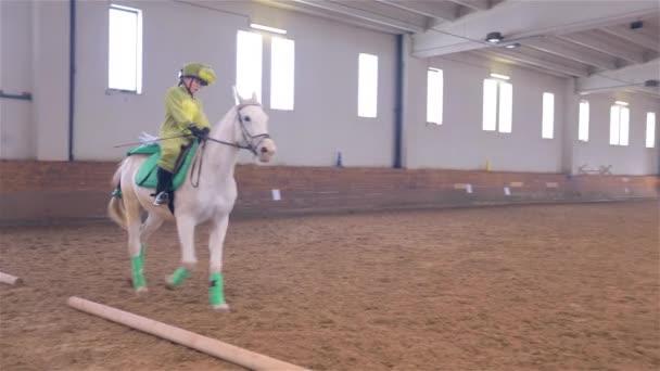 Koně jezdecké osoby