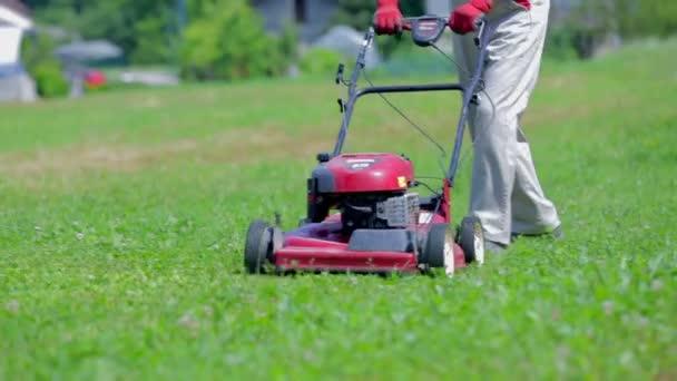 muži, kteří pracují v zahradě