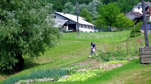 muž sečení trávníku