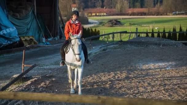 Žokej školení bílého ušlechtilého koně
