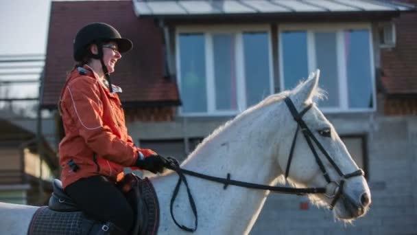 Személy megveregette a ló előtt egy kört