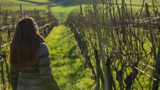 Nőt, sétál a szőlőben