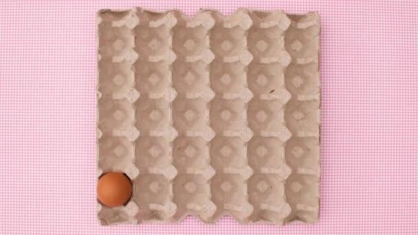 A tojások doboza megjelenik, a tojások pedig a dobozban. Állj!