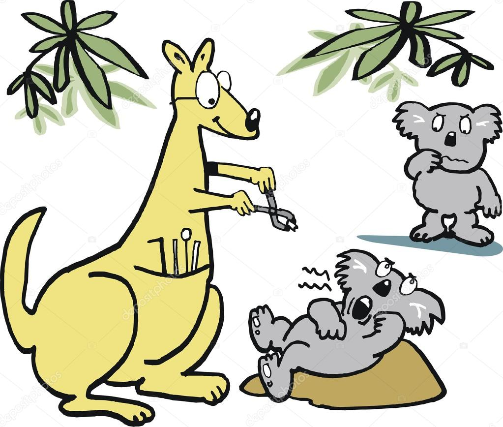 vector cartoon of kangaroo dentist taking teeth out of koala