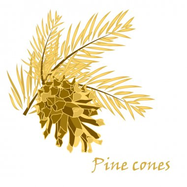 Fir tree branches with pine cone in golden color