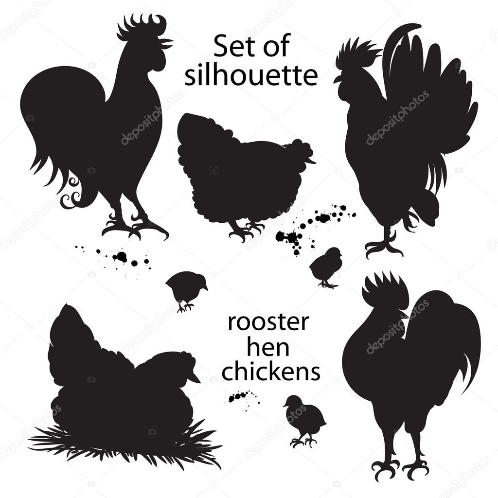 set of black silhouette of roosters hens and chickens hand