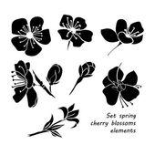Fényképek Fekete sziluettje tavaszi cseresznyevirág virág szett